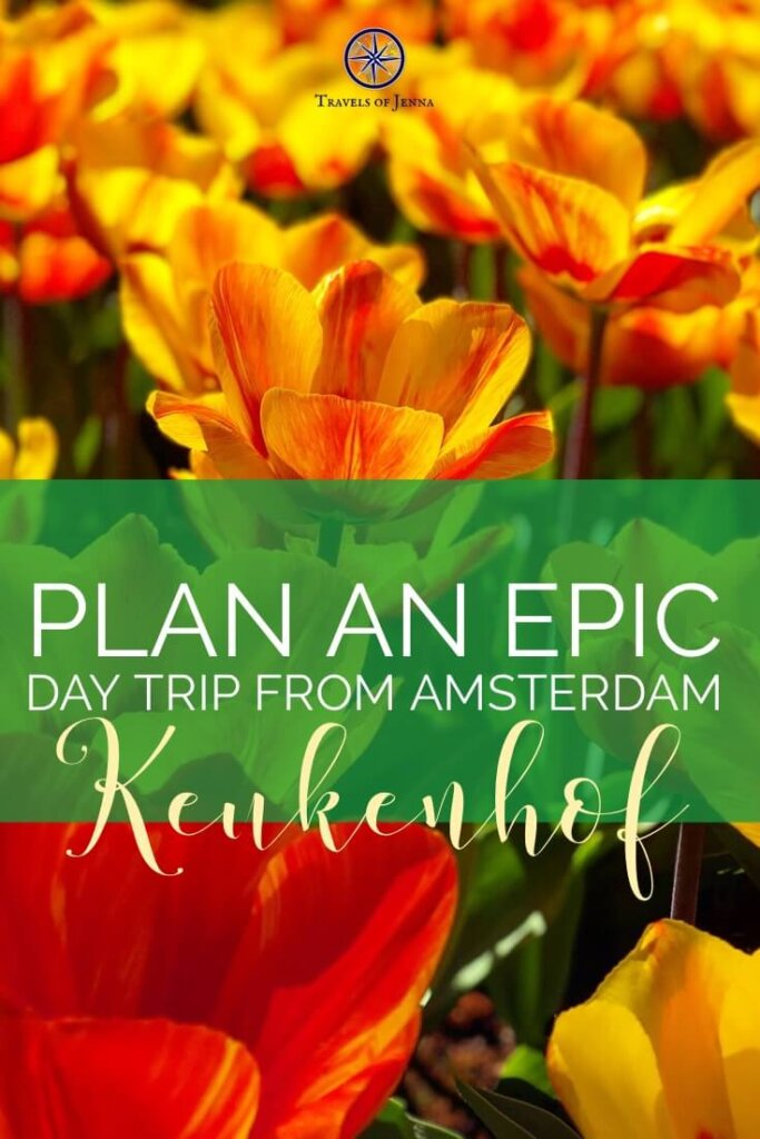 Plan an epic day trip from Amsterdam to Keukenhof Gardens in Lisse! Everything you need to know to make your day simple and exciting. #amsterdamtulips #keukenhofgardens #amsterdamdaytrips #amsterdamtravelguide