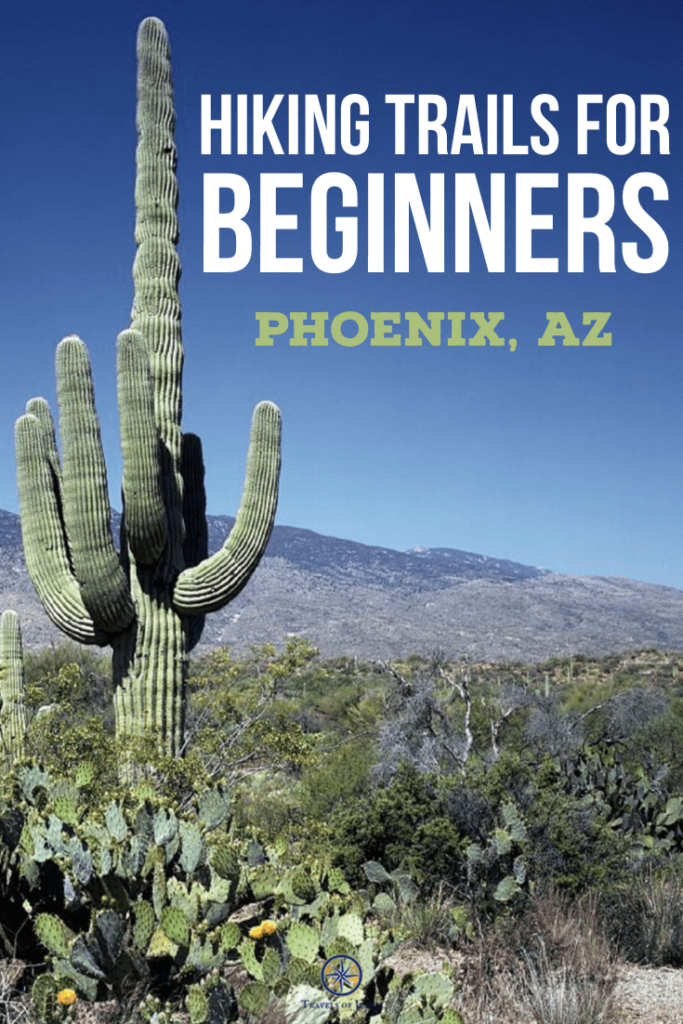 Best hikes in the Phoenix Area. Saguaro on the trail